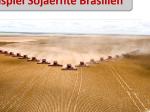 sojaernte_brasilien